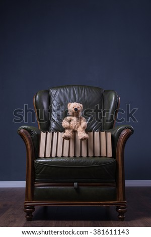Teddy bear and books in cosy green leather armchair in front of the wall
