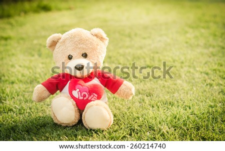 Teddy bear brown color on green grass background in vintage retro style soft focus - stock photo