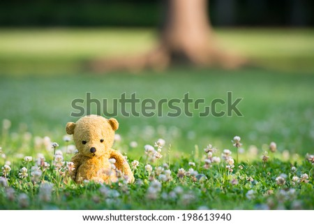TEDDY BEAR brown color with scarf on the grass - stock photo