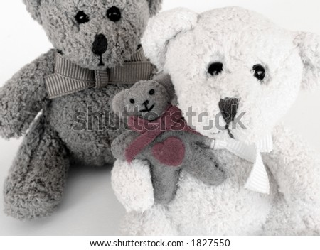 Teddy Bear Family 0007