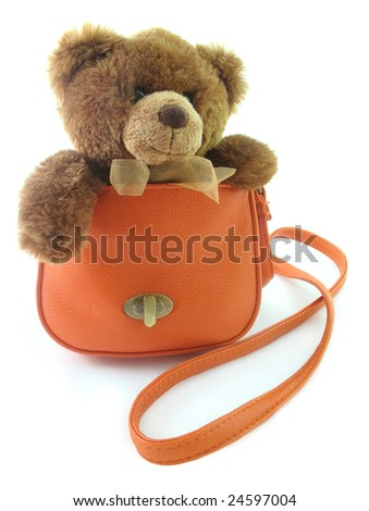 Teddy bear in a bag