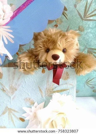 Teddy Bear in Gift Box backgroung