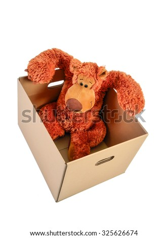 teddy bear in paper box on a white background - stock photo