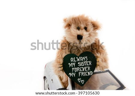 Teddy bear in toy car on white background