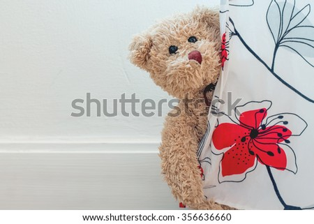 teddy bear is playing curtain