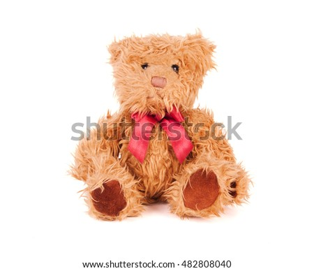 Teddy bear isolated on white