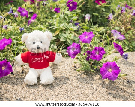 Teddy Bear sit beside colorful flower in the garden under sunlight in the afternoon (Love concept)