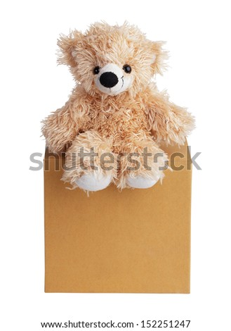Teddy bear sits on a carboard box