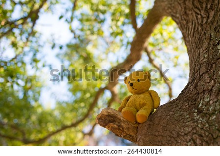Teddy bear sitting in a tree - stock photo
