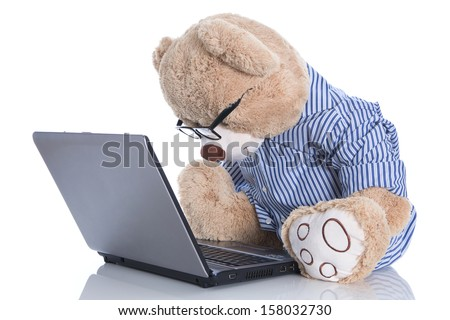 Teddy bear with glasses looking at lap top isolated on white background - stock photo