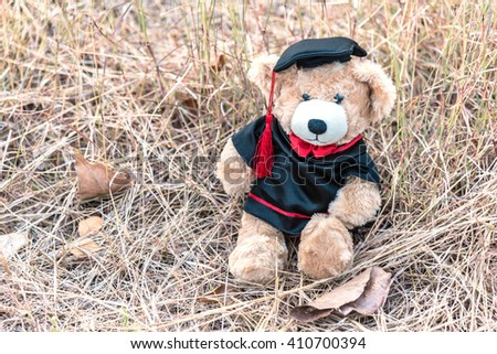 teddy bear with graduation gown on brown grass background, congratulations concept - stock photo