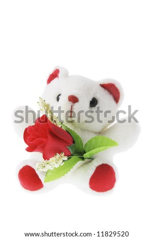 Teddy Bear with Red Rose on White Background