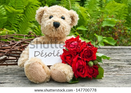 teddy bear with red roses  and card with lettering sorry/roses/teddy