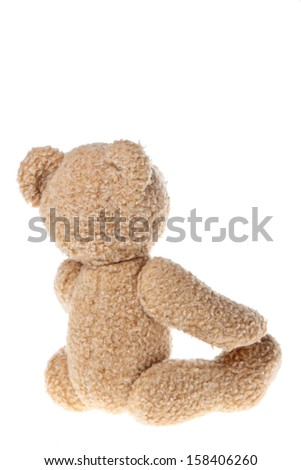Teddy/Children's toy teddy bear