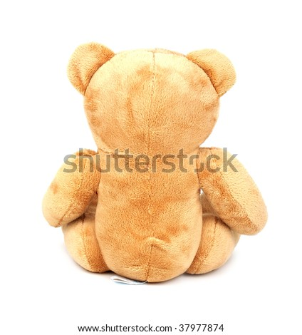 Teddy isolated on white background. Back view - stock photo