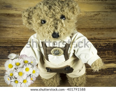 teddy presented flowers - stock photo