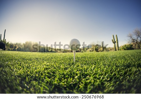 Tee off - golf ball - extreme wide angle view from low vantage point.Fisheye lens effect. - stock photo