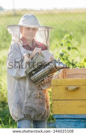 Teenage beekeeper and a seasonal honey harvesting - stock photo