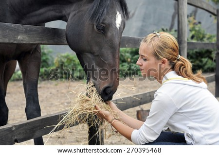 teenage girl feeding horse in the farm  - stock photo