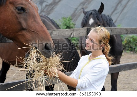 teenage girl feeding horses in the farm  - stock photo