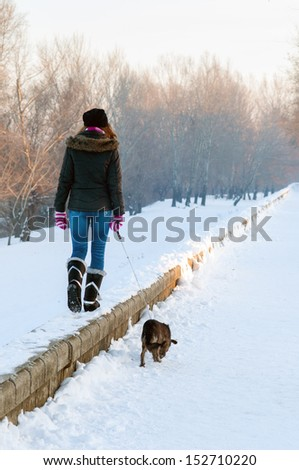 Teenage girl walking the dog on cold winter day. - stock photo
