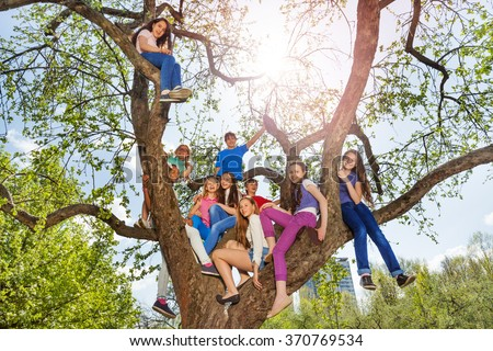 Teenagers sit on tree during beautiful summer day