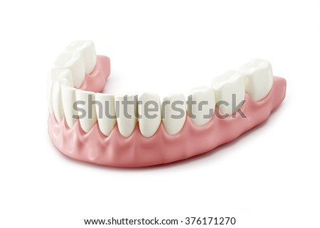 Teeth. 3D illustration on white background
