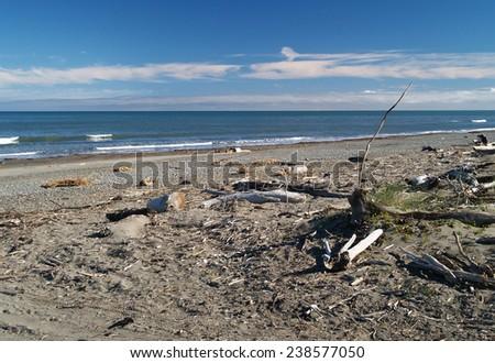 TeHoro beach, New Zealand - stock photo