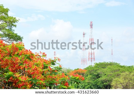 Telecommunication Tower and Telephone Transmitter and trees and red flowers with blue sky