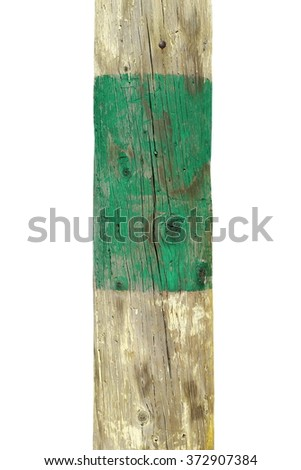 telegraph pole isolated on white background - stock photo