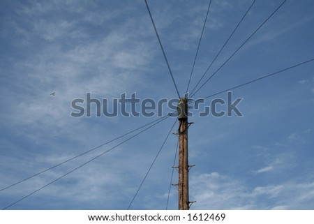 telephone pole - stock photo