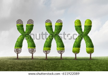 Telomere growth and longer length as a DNA medical concept as a chromosome tree with growing end caps as a symbol for aging and genetic protection for longer life or longevity with 3D illustration.