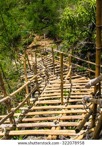 Temporary bamboo staircases in forest.