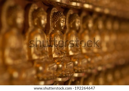 ten thousand golden buddhas lined up along the wall of chinese