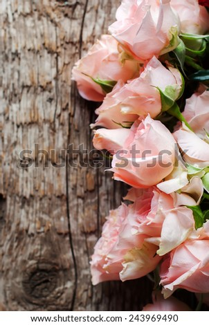 Tender Pink Roses in a Row on Wooden Table - stock photo