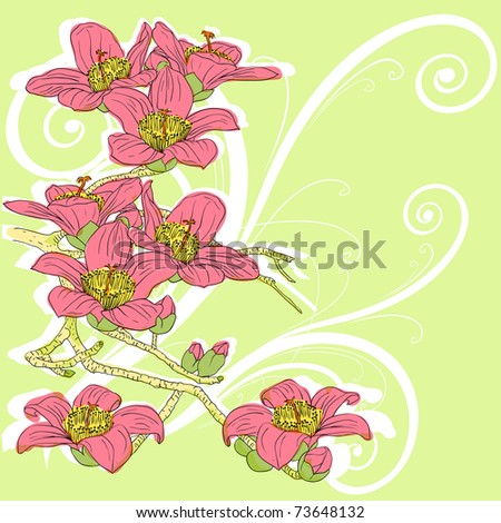 tender twig blossoming orchids on a light background