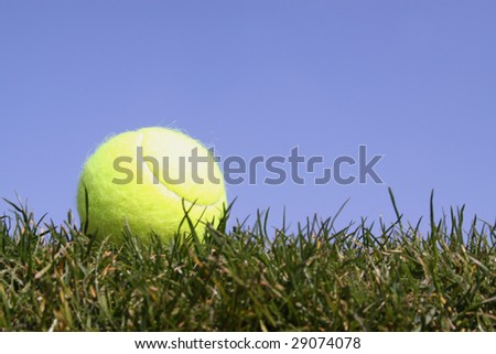 Tennis ball in gras against a bright blue sky