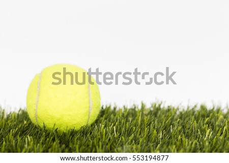 Tennis ball lays on a grass on a white background