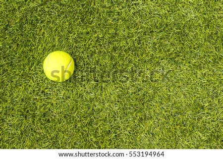 Tennis ball on green grass. Concept