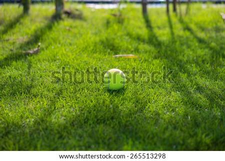 Tennis ball on wet grass after raining - stock photo