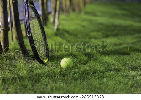 Tennis ball with racket on wet grass after raining  - stock photo