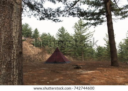 Tent and firewood in the woods & Tent Firewood Woods Stock Photo 742744600 - Shutterstock