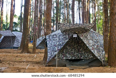 Tent for camping in the forest