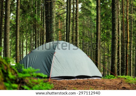 tent in the pine forest, rain and sun