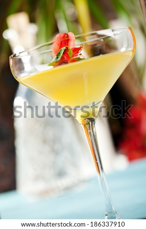 Tequila and Apricot Cocktail - stock photo