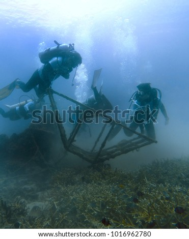 TERENGGANU, MALAYSIA : FEBRUARY 2, 2018 - Divers perform underwater cleanup activities in Bidong Island.