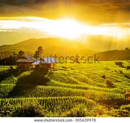 Terrace rice fields at Bann Bong Piang in Mae chaem, Chaing Mai, Thailand - stock photo