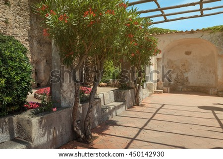 Terrace with pergola and flowers. Mediterranean Sea. Italy.