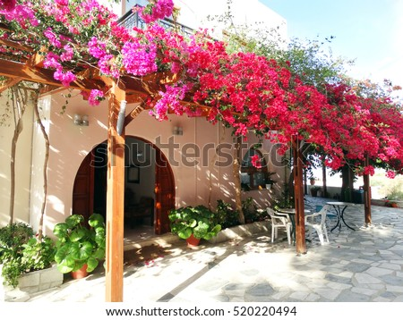 terrace with tables and chairs in traditional street Greece