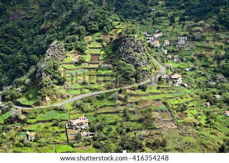 Terraced fields in Madeira in the springtime, Portugal